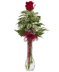 Single Rose Vase Floyd, VA Florist, Floyd Florists, Florists in Floyd VA, Floyd Florists - Floyd VA Flowers Delivery,