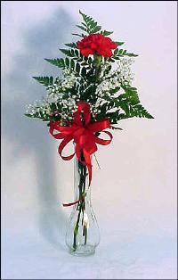 Single Carnation Vase Floyd, VA Florist, Floyd Florists, Florists in Floyd VA, Floyd Florists - Floyd VA Flowers Delivery,