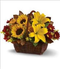 Golden Days Basket Arrangement Floyd, VA Florist, Floyd Florists, Florists in Floyd VA, Floyd Florists - Floyd VA Flowers Delivery,