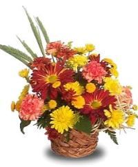 Colorful Harvest Basket Floyd, VA Florist, Floyd Florists, Florists in Floyd VA, Floyd Florists - Floyd VA Flowers Delivery,