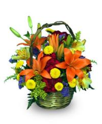 Colorful Fall Basket Floyd, VA Florist, Floyd Florists, Florists in Floyd VA, Floyd Florists - Floyd VA Flowers Delivery,