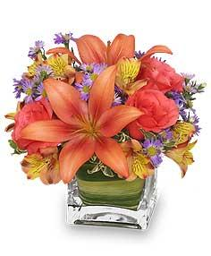 Friendly Fall Cube Floyd, VA Florist, Floyd Florists, Florists in Floyd VA, Floyd Florists - Floyd VA Flowers Delivery,