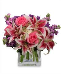 More Than Words... Cube Floyd, VA Florist, Floyd Florists, Florists in Floyd VA, Floyd Florists - Floyd VA Flowers Delivery,