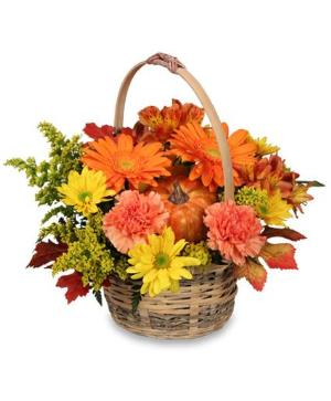 Enjoy Fall! Basket Floyd, VA Florist, Floyd Florists, Florists in Floyd VA, Floyd Florists - Floyd VA Flowers Delivery,