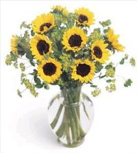 Happiness Bouquet Floyd, VA Florist, Floyd Florists, Florists in Floyd VA, Floyd Florists - Floyd VA Flowers Delivery,