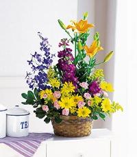 Basket with Mixed Flowers Floyd, VA Florist, Floyd Florists, Florists in Floyd VA, Floyd Florists - Floyd VA Flowers Delivery,