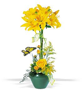 Lily Topiary Floyd, VA Florist, Floyd Florists, Florists in Floyd VA, Floyd Florists - Floyd VA Flowers Delivery,