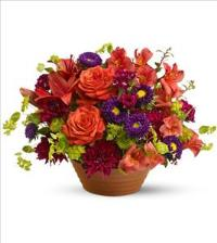Autumn Celebration Floyd, VA Florist, Floyd Florists, Florists in Floyd VA, Floyd Florists - Floyd VA Flowers Delivery,