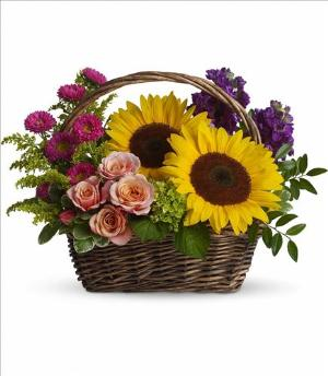 Picnic in the Park Floyd, VA Florist, Floyd Florists, Florists in Floyd VA, Floyd Florists - Floyd VA Flowers Delivery,