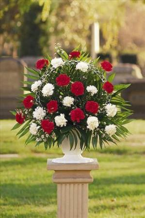 Red & White Carnation Basket Floyd, VA Florist, Floyd Florists, Florists in Floyd VA, Floyd Florists - Floyd VA Flowers Delivery,