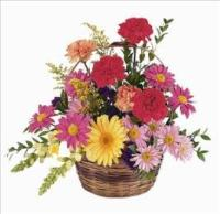Mixed Flower Basket Floyd, VA Florist, Floyd Florists, Florists in Floyd VA, Floyd Florists - Floyd VA Flowers Delivery,