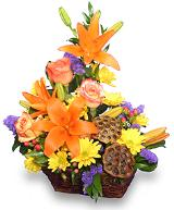 Expressions of Fall Basket Floyd, VA Florist, Floyd Florists, Florists in Floyd VA, Floyd Florists - Floyd VA Flowers Delivery,