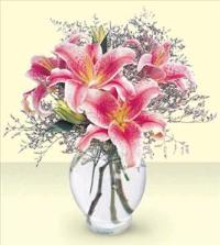 Pink Lily Bouquet Floyd, VA Florist, Floyd Florists, Florists in Floyd VA, Floyd Florists - Floyd VA Flowers Delivery,