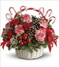 Candy Cane Christmas Floyd, VA Florist, Floyd Florists, Florists in Floyd VA, Floyd Florists - Floyd VA Flowers Delivery,